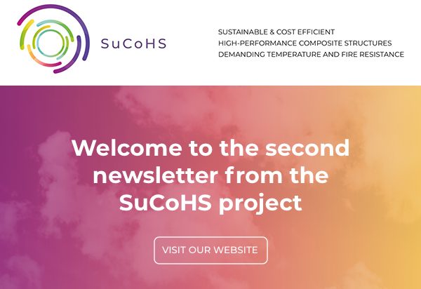 Cover page of the SuCoHS Newsletter No 2