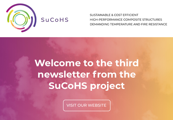 Cover page of the SuCoHS newsletter No 3